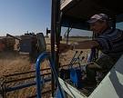 Синоптики ожидают роста урожая зерновых на 15-20%