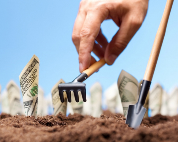 20% портфеля РФПИ— проекты в агросекторе