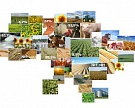 Cargill вошла в капитал крупнейшего агрохолдинга Украины
