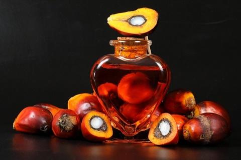 Импорт пальмового масла в сезоне-2018/19 может составить 1,1 млн тонн