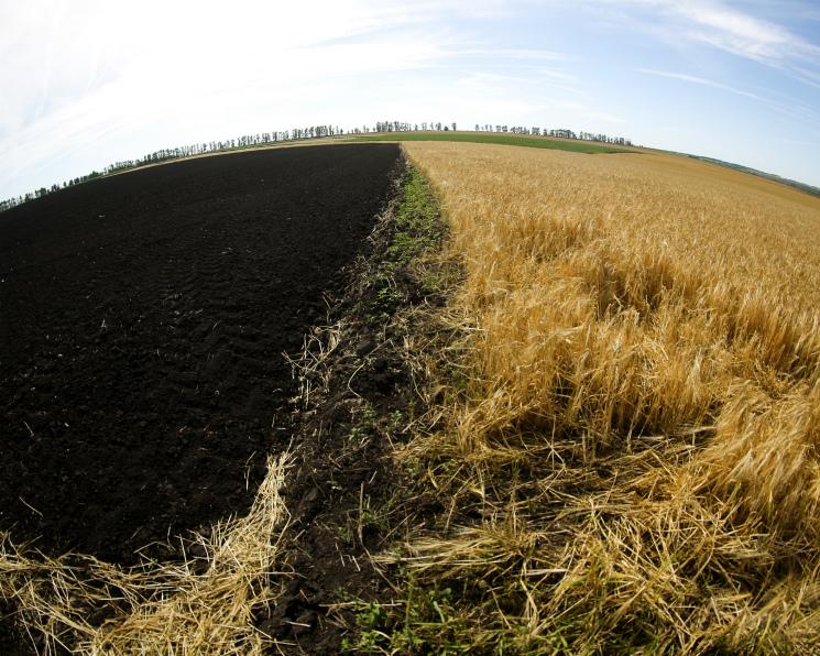 Воборот возвращено 650 тысяч гектаров сельхозземель