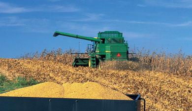 Зернового пула небудет?