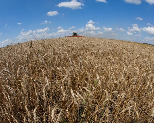 Число сельхозорганизаций за10 лет уменьшилось на40%
