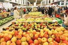 Правительство изучает возможность субсидирования производства фруктов и ягод
