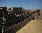 На юге России растут остатки зерна