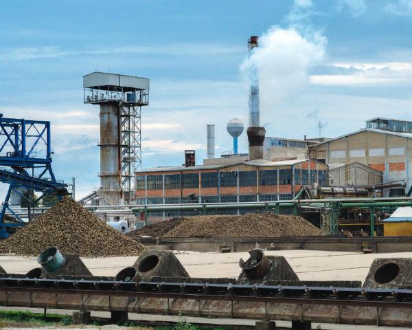 «Русагро» добавила сладкого: компания купила три сахарных завода «Разгуляя»