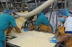 ВТамбовской области начнется строительство кластера попроизводству ипереработке молока