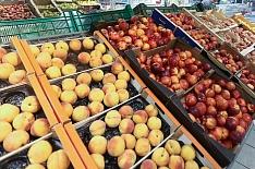 Россия и Таджикистан увеличивают товарооборот сельхозпродукции