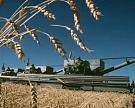 В2008г сельхозпроизводство выросло на10,8%