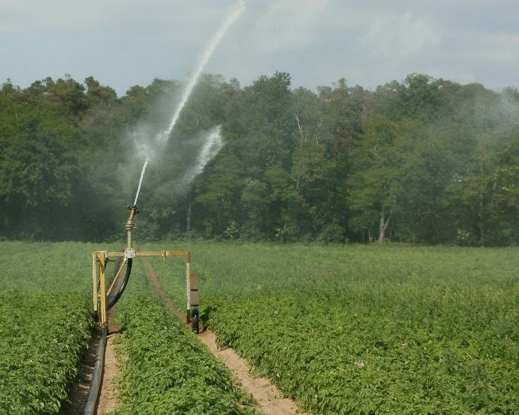 В2018 году наорошении будет 3,89 млн гектаров сельхозземель