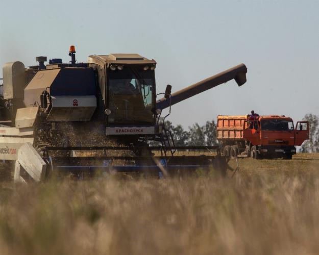 Куборке зерна приступили все федеральные округа