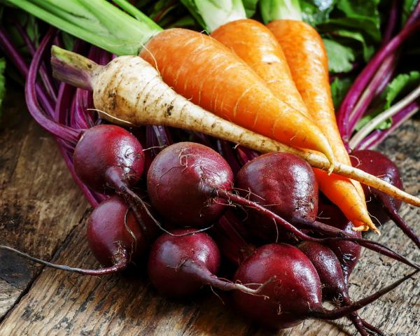 Инвестиции в «борщевой набор». Аграрии увеличивают производство овощей открытого грунта