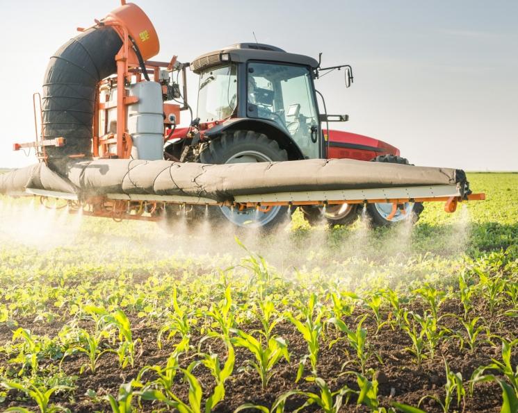 Защитить зерновые. Экспертный анализ российского рынка средств защиты