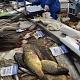 300 тонн рыбной продукции продано занеделю