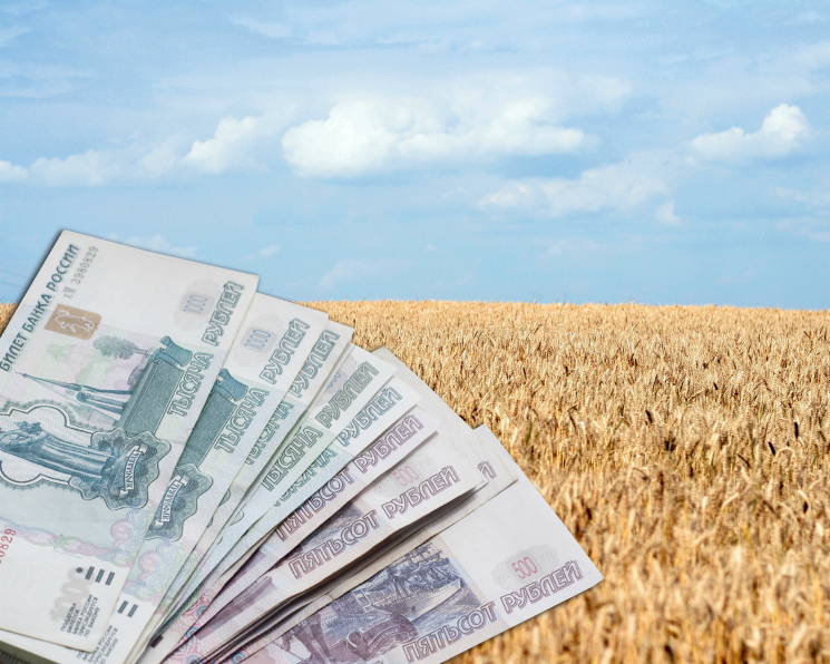 Минсельхоз расширил направления льготного кредитования