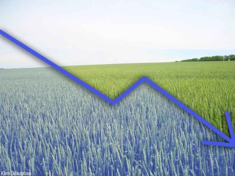 Рейтинг землевладельцев: 9 млн га на 40 компаний