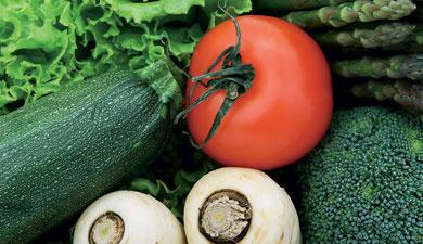 ГБС укрывает овощи туманом