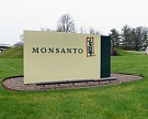 Bayer купил американского производителя семян Monsanto за $66 млрд