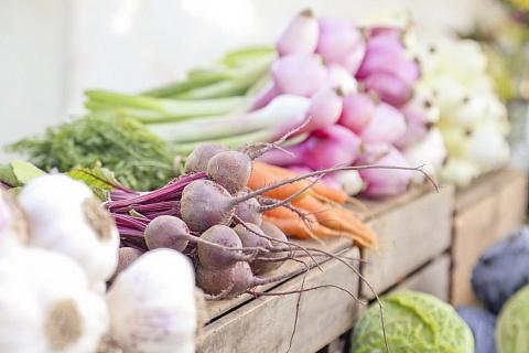 Низкие цены на овощи сдерживают развитие отрасли