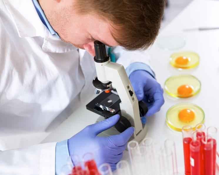 Антибиотики пытаются взять под контроль. Решение ЕЭК о содержании ветпрепаратов в животном сырье вступило в силу