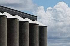 Запасы зерна сократятся до шестилетнего минимума