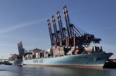 В этом году экспорт продукции АПК может достичь $26 млрд