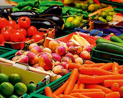 Как государство может помочь в увеличении производства овощей на $2,5 млрд
