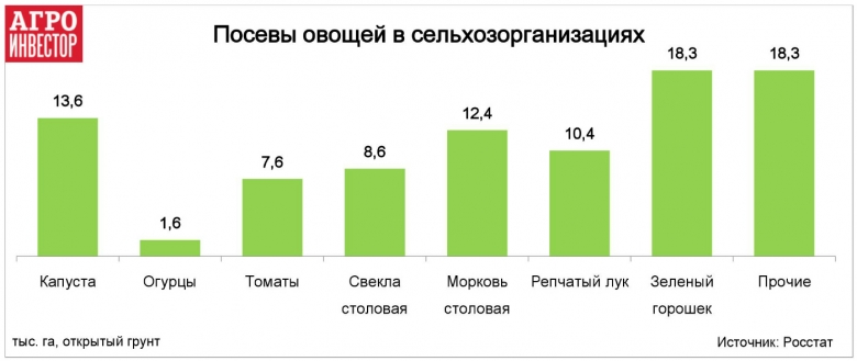 В сельхозорганизациях и КФХ 27% посевов овощей