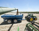 В Сибири и ЮФО резко подорожала пшеница