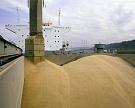 Экспорт зерна превысил прошлогодний темп