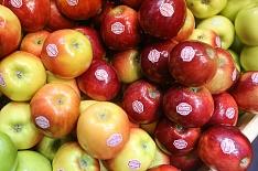 Лимит на яблоки