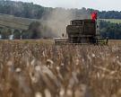Ткачев не исключает абсолютного рекорда по урожаю зерна в 110 млн тонн