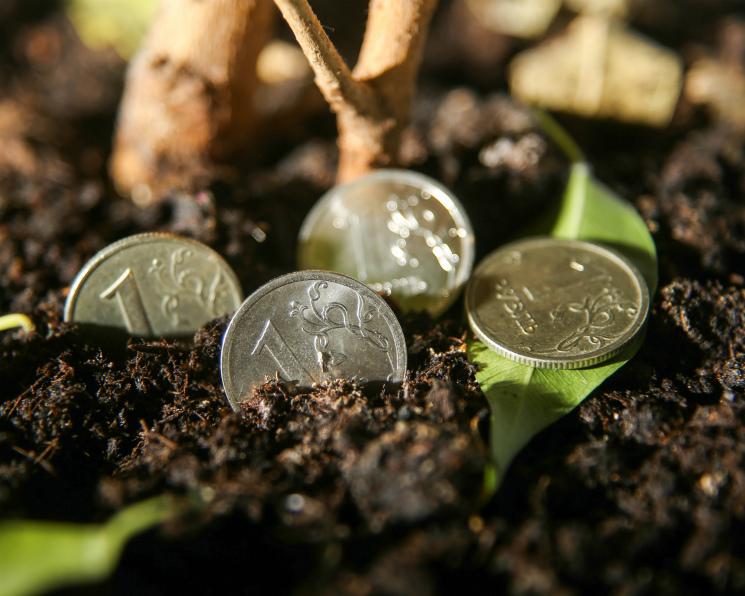 МинсельхозРФ обнародовал план льготного кредитования на 2018-й год
