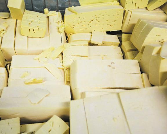 Сыр закупят в госфонд