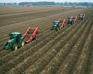 «АФГ Националь» купила очередной актив для картофельного бизнеса
