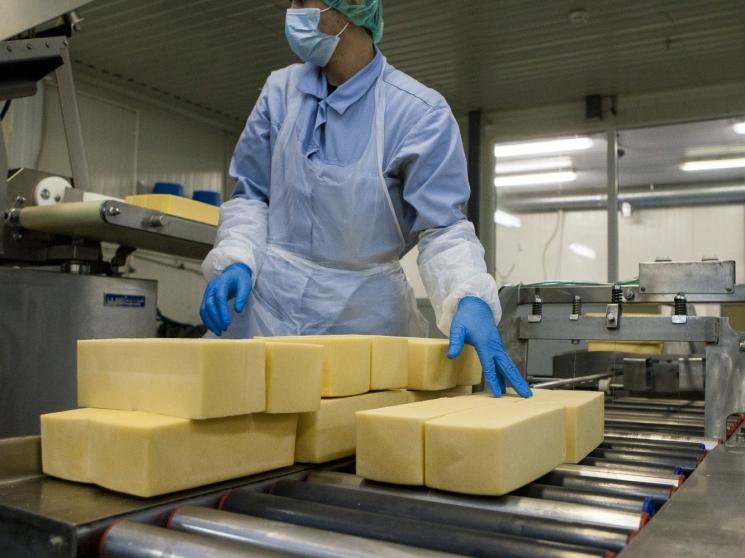 Права «Русагро» на управление молочными активами могут быть оспорены