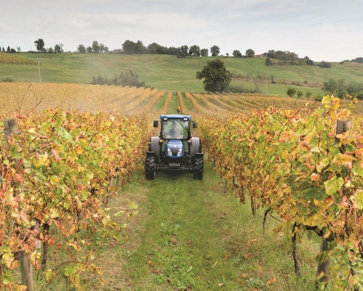 Механический садовник. Как выбрать трактор для садоводства и виноградарства