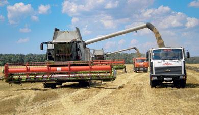 Невертикальный агрохолдинг