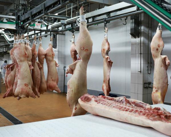 Условно российское мясо
