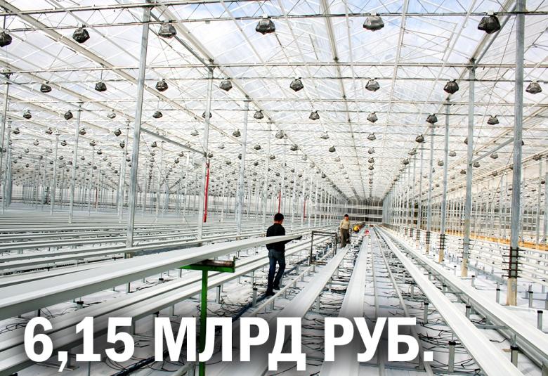 «Овощи Ставрополья» вдвое расширят тепличный комплекс