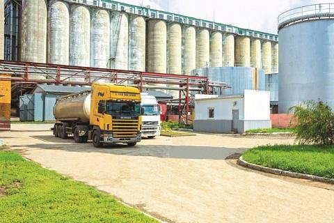 «Русагро» хочет построить крупнейший в мире завод соусов