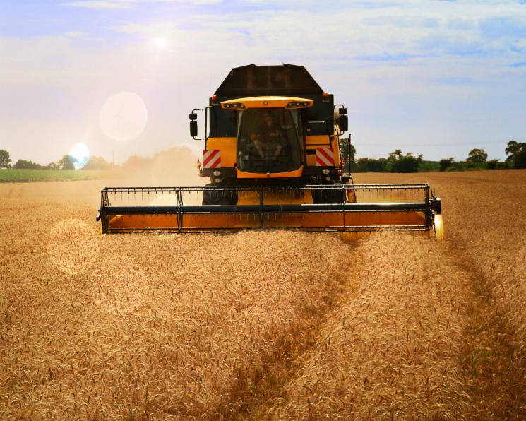 Минсельхоз США улучшил прогнозы по урожаю в России
