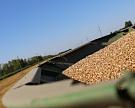Сбор зерна превысил прошлогодние показатели