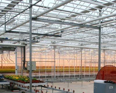 SEN планирует строительство тепличного комплекса вПензенской области