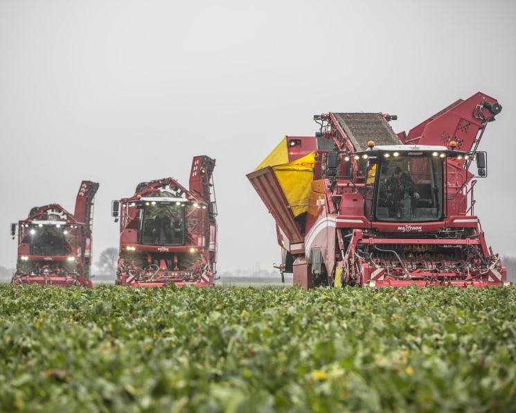 К растениеводам вернется маржа. Неблагоприятные погодные условия сократили урожаи, но помогли вырасти ценам на ряд агрокультур