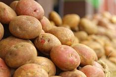 Нарынке посыпалась картошка. Цены накартофель этой весной упали на50%