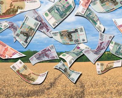 Повышенные закупочные цены на зерно все равно ниже рынка