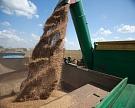 Разница в цене на пшеницу третьего и пятого классов выросла почти до 3 тысяч рублей