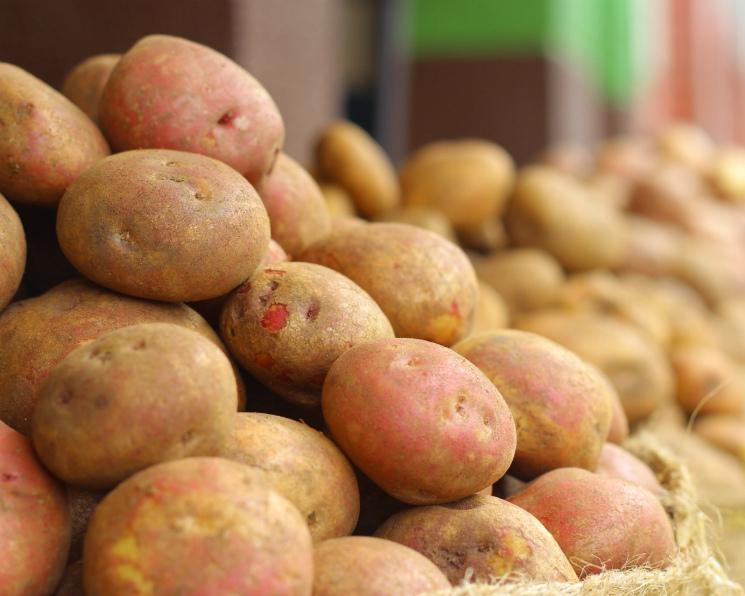 На рынке посыпалась картошка. Цены на картофель этой весной упали на 50%