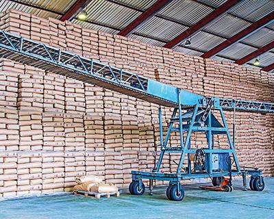 Сахарный топ: 85% сахара делают шесть регионов